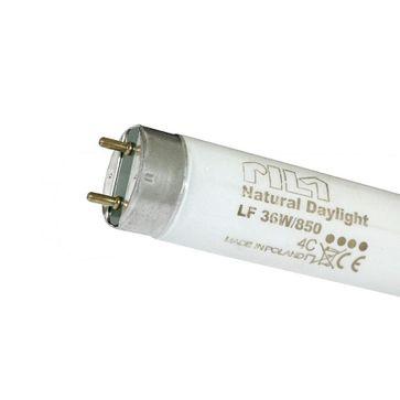Świetlówka G13 LF80 36W/840 4000K